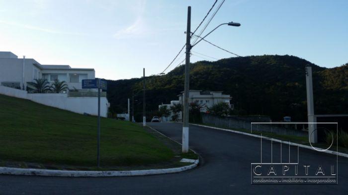 Terreno, Tamboré, Santana de Parnaiba (4826) - Foto 3