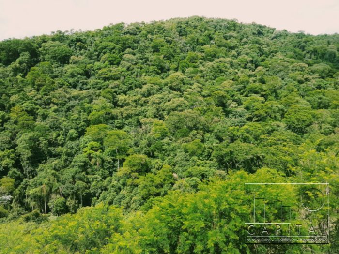 Casa 4 Dorm, Alphaville, Santana de Parnaiba (4988) - Foto 3